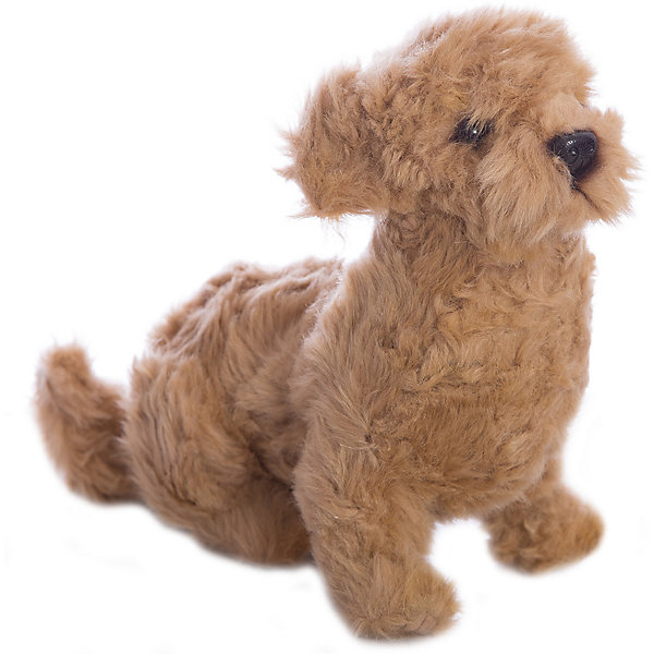 Филиппинская собака, 30 см, HansaСимвол 2018 года: Собака<br>Филиппинская собака, 30 см, Hansa (Ханса)<br><br>Характеристики:<br><br>• реалистичные детали<br>• прочный каркас<br>• приятная на ощупь<br>• размер игрушки: 30 см <br>• материал: искусственный мех, пластик, полиэфир, текстиль<br>• размер упаковки: 34х23х9 см<br>• вес: 240 грамм<br><br>Филиппинская собака Hansa практически не отличается от своего прототипа. Ее блестящие глазки и мягкая шерстка точно не оставят вас равнодушным. Игрушка тщательно детализирована, чтобы вы могли с радостью любоваться ею. Филиппинская собака отлично дополнит коллекцию игрушек детей и взрослых.<br><br>Филиппинскую собаку, 30 см, Hansa (Ханса) можно купить в нашем интернет-магазине.<br>Ширина мм: 220; Глубина мм: 300; Высота мм: 150; Вес г: 840; Возраст от месяцев: 36; Возраст до месяцев: 2147483647; Пол: Унисекс; Возраст: Детский; SKU: 5503304;