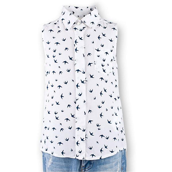 Блузка для девочки  BUTTON BLUEБлузки и рубашки<br>Блузка для девочки  BUTTON BLUE<br>Недорогие детские блузки  - не значит, скучные! В новом весенне-летнем сезоне блузка без рукавов - базовая составляющая модного  гардероба. Именно поэтому детская блузка без рукавов - хит летней коллекции от Button Blue! Простая, удобная и очень элегантная модель в компании с шортами, брюками, юбкой сделает повседневный образ ребенка модным и современным.<br>Состав:<br>100%  вискоза<br>Ширина мм: 174; Глубина мм: 10; Высота мм: 169; Вес г: 157; Цвет: белый; Возраст от месяцев: 24; Возраст до месяцев: 36; Пол: Женский; Возраст: Детский; Размер: 98,146,128,122,116,110,104; SKU: 5523275;
