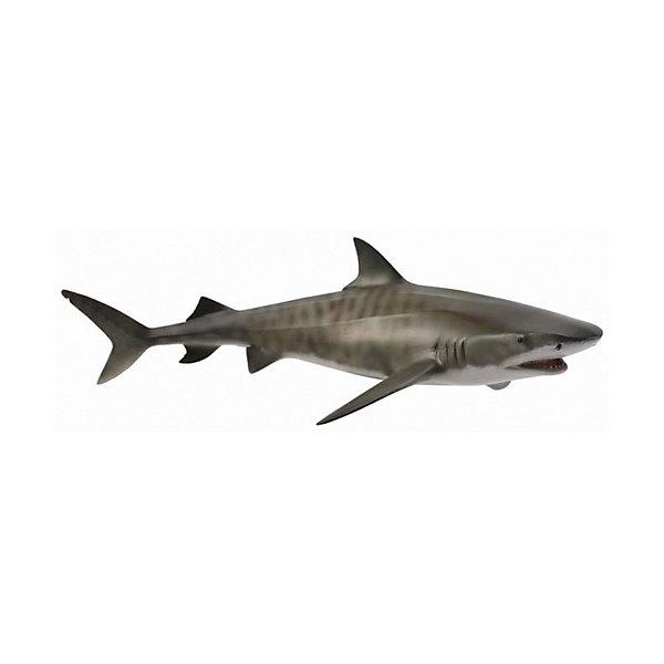 Тигровая акула, L, CollectaМир животных<br><br>Ширина мм: 200; Глубина мм: 10; Высота мм: 10; Вес г: 150; Возраст от месяцев: 36; Возраст до месяцев: 192; Пол: Унисекс; Возраст: Детский; SKU: 5534507;
