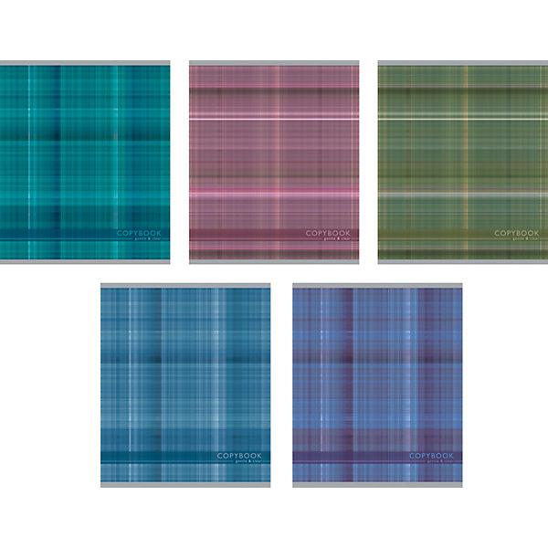 Erich Krause Тетрадь 48 л Gentle&Clear, упаковка из 5 шт., клетка erich krause набор тетрадей родные просторы пруд 24 листа в линейку 10 шт