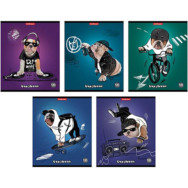 Тетрадь 48 л Dog rules, упаковка из 5 шт.Тетради<br>Тетрадь 48 листов Dog rules, 5 шт.<br><br>Характеристики:<br><br>• Количество: 5 шт.<br>• Формат: А5<br>• Внутренний блок: 48 листов, клетка, офсет<br>• Тип крепления: скрепка<br>• Обложка: мелованный картон<br><br>Комплект тетрадей в клетку Dog rules выполнен в формате А5. Отличная полиграфия и качественная бумага обеспечат высокое качество письма. Обложка из мелованного картона позволит сохранять тетрадь в аккуратном виде в течение всего периода использования.<br><br>Тетрадь 48 листов Dog rules, 5 шт. можно купить в нашем интернет-магазине.<br>Ширина мм: 170; Глубина мм: 50; Высота мм: 205; Вес г: 521; Возраст от месяцев: 60; Возраст до месяцев: 204; Пол: Унисекс; Возраст: Детский; SKU: 5540107;