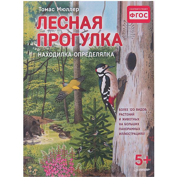 ПИТЕР Книжка с иллюстрациями Лесная прогулка