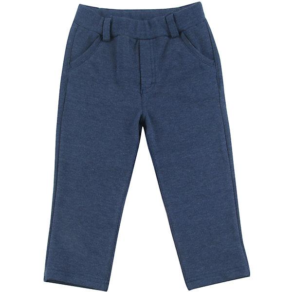 Wojcik Спортивные брюки Wojcik