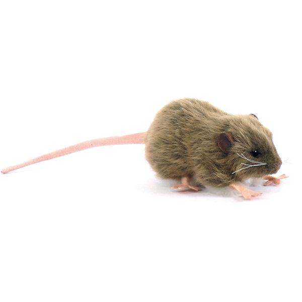Мягкая игрушка Hansa Крыса бурая, 12 смМягкие игрушки животные<br>Характеристики товара:<br><br>• возраст: от 3 лет;<br>• материал: искусственный мех;<br>• длина игрушки: 12 см;<br>• размер упаковки: 12х6х7 см;<br>• вес упаковки: 15 гр.;<br>• страна производитель: Филиппины.<br><br>Мягкая игрушка Крыса бурая Hansa 12 см — маленькая мышка с глазками-пуговками и длинным хвостиком, которая станет для ребенка любимым домашним питомцем. Игрушку можно брать с собой на прогулку, в детский садик, в гости и устраивать вместе с друзьями веселые игры. <br><br>Внутри проходит титановый каркас, который позволяет менять положение лап, туловища, поворачивать голову. Игрушка сделана из качественных безопасных материалов.<br><br>Мягкую игрушку Крыса бурая Hansa 12 см можно приобрести в нашем интернет-магазине.<br>Ширина мм: 120; Глубина мм: 60; Высота мм: 70; Вес г: 15; Возраст от месяцев: 36; Возраст до месяцев: 2147483647; Пол: Унисекс; Возраст: Детский; SKU: 6680742;