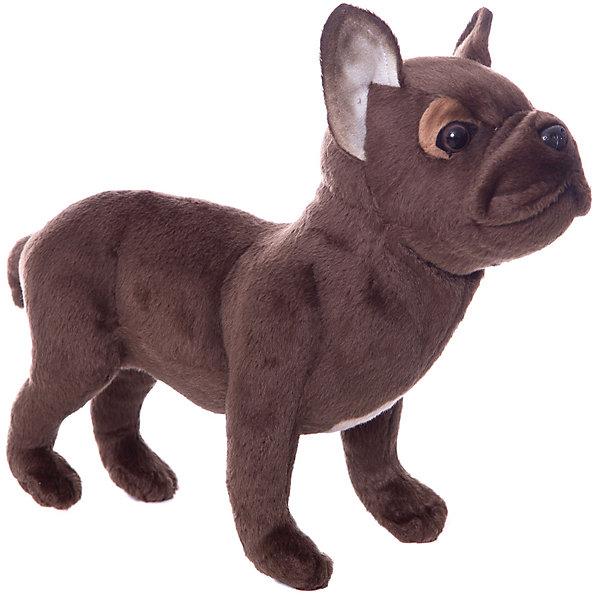 Hansa Мягкая игрушка Hansa Французский бульдог, стоящий, 26 см мягкая игрушка бульдог 18 см