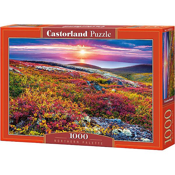 Castorland Пазл Северная палитра, 1000 деталей, Castorland