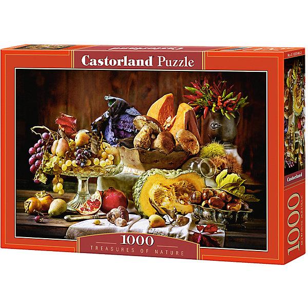Castorland Пазл Дары природы, 1000 деталей, Castorland castorland пазл цветы 1000 деталей castorland