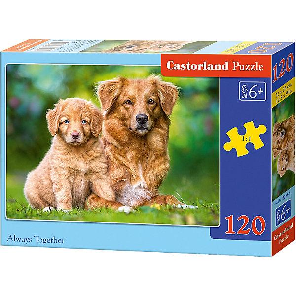Пазл Castorland Всегда вместе, 120 деталейПазлы классические<br>Характеристики:<br><br>• возраст: от 6 лет<br>• количество деталей: 120 шт.<br>• размер собранного пазла: 32х23 см.<br>• материал: картон<br>• упаковка: картонная коробка<br>• размер упаковки: 17,5x3,7x13 см.<br>• вес: 300 гр.<br>• страна обладатель бренда: Польша<br><br>Пазл «Всегда вместе» от Castorland (Касторленд) отличается высоким качеством, высоким уровнем полиграфии, насыщенными цветами и идеальной стыковкой элементов. Из 120 элементов пазла ребенок соберет красочную картинку с изображением собаки и забавного щенка.<br><br>Пазл Всегда вместе, 120 деталей, Castorland (Касторленд) можно купить в нашем интернет-магазине.<br>Ширина мм: 175; Глубина мм: 130; Высота мм: 37; Вес г: 300; Возраст от месяцев: 72; Возраст до месяцев: 2147483647; Пол: Унисекс; Возраст: Детский; SKU: 6725098;