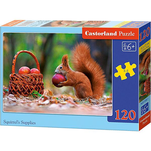 Пазл Castorland Белочка, 120 деталейПазлы классические<br>Характеристики:<br><br>• возраст: от 6 лет<br>• количество деталей: 120 шт.<br>• размер собранного пазла: 32х23 см.<br>• материал: картон<br>• упаковка: картонная коробка<br>• размер упаковки: 17,5x3,7x13 см.<br>• вес: 300 гр.<br>• страна обладатель бренда: Польша<br><br>Пазл «Белочка» от Castorland (Касторленд) отличается высоким качеством, высоким уровнем полиграфии, насыщенными цветами и идеальной стыковкой элементов. Из 120 элементов пазла ребенок соберет красочную картинку, на которой изображена белочка, лакомящаяся яблоком.<br><br>Пазл Белочка, 120 деталей, Castorland (Касторленд) можно купить в нашем интернет-магазине.<br>Ширина мм: 175; Глубина мм: 130; Высота мм: 37; Вес г: 300; Возраст от месяцев: 72; Возраст до месяцев: 2147483647; Пол: Унисекс; Возраст: Детский; SKU: 6725101;