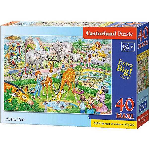 Castorland Макси-пазл Castorland Зоопарк, 40 деталей пазл аэропорт castorland 40 деталей