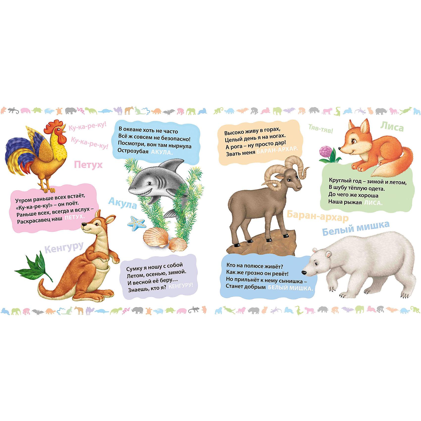 загадочность загадки про животных ответы в картинках нас любит сделать