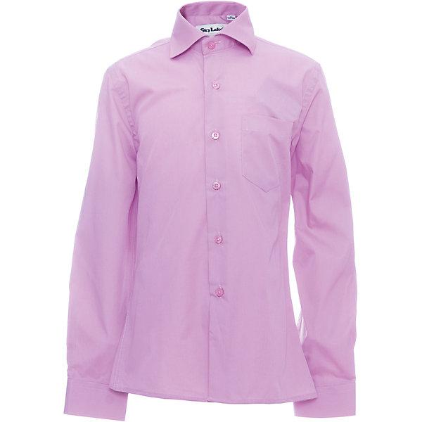 Рубашка CLASSIC SLIM FIT для мальчика SkylakeБлузки и рубашки<br>Сорочка детская для мальчика<br>Состав:<br>80% хлопок, 20% п/э<br>Ширина мм: 174; Глубина мм: 10; Высота мм: 169; Вес г: 157; Цвет: лиловый; Возраст от месяцев: 72; Возраст до месяцев: 84; Пол: Мужской; Возраст: Детский; Размер: 122,158,152,146,140,134,128; SKU: 6772753;