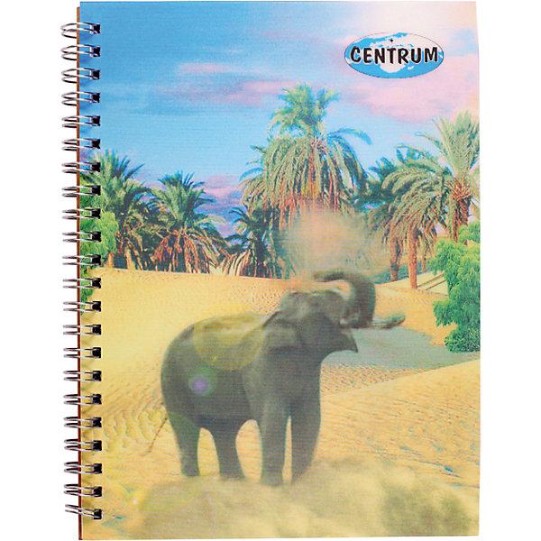 Купить Centrum Блокнот А5, 60 листов, клетка, обложка 3D, Китай, Унисекс