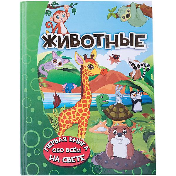 Издательство АСТ Энциклопедия для малышей Животные