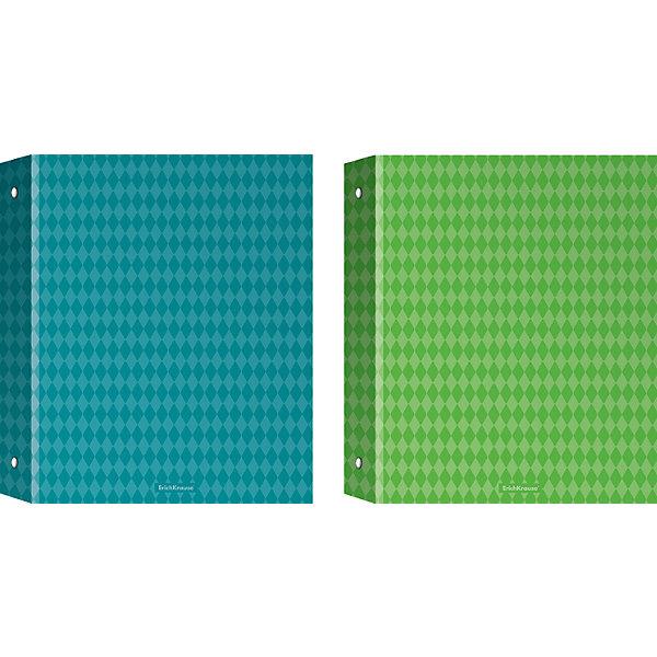 Erich Krause Тетрадь на кольцах А5,80л клетка Study up 2, 2 пантона+ламинат (глянцевый)