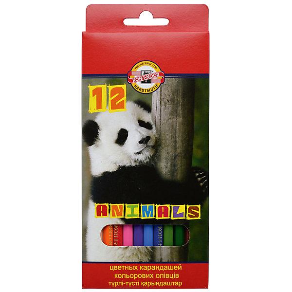 Купить KOH-I-NOOR Набор карандашей цветных ЖИВОТНЫЕ, 12 цв, Чехия, Унисекс