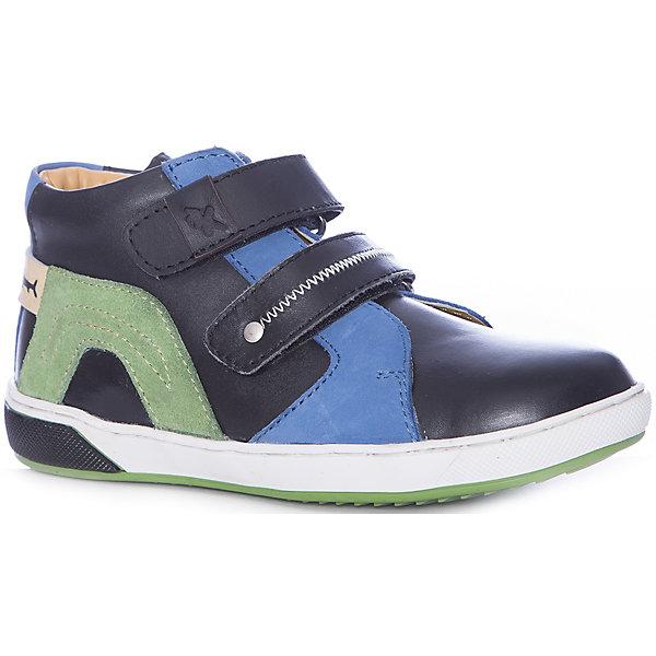 KAKADU Ботинки Kakadu для мальчика ботинки для мальчика flamingo цвет черный 71b xy 0124 размер 23