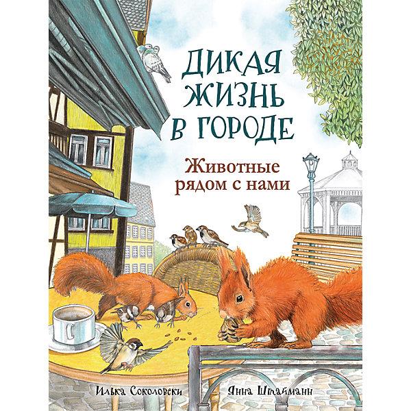 Росмэн Дикая жизнь в городе: Животные рядом с нами