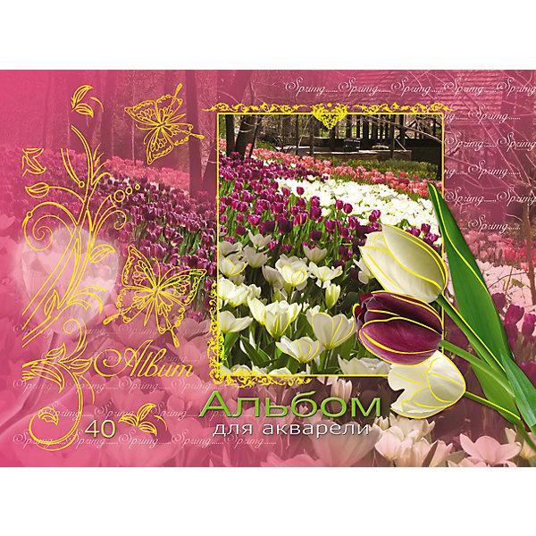 АппликА Альбом-планшет для рисования на гребне 40 листов, обложка с тиснением фольгой. Обложка Май