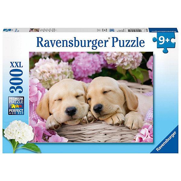 Купить Пазл Ravensburger XXL: сладкие щенки в корзинке , 300 элементов, Германия, Унисекс