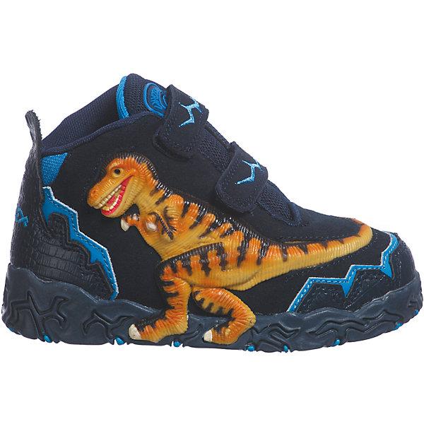 Ботинки для мальчика DinosolesБотинки<br>Ботинки для мальчика Dinosoles<br><br>Состав верх: нат. кожа/замша, подклад: текстиль, подошва: резина<br><br> Dinosoles - единственная в мире детcкая обувь с трехмерным изображением динозавров. Натуральные материалы, отобранные коллекции, 3D дизайн, горящие глаза, фирменная подошва, оставляющая след динозавра, приводят всех в восторг! Dinosoles - Динозавры возвращаются. The USA.<br><br>Cтрана бренда: США <br>Размер обуви производителя  US : US 2<br>Длина по стельке в мм: 217<br>Ширина мм: 262; Глубина мм: 176; Высота мм: 97; Вес г: 427; Цвет: синий; Возраст от месяцев: 36; Возраст до месяцев: 48; Пол: Мужской; Возраст: Детский; Размер: 27,33,32,31,30,29,28; SKU: 7030319;