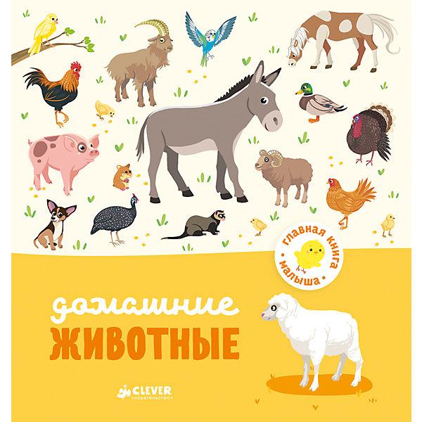 Купить Домашние животные, А. Бессон, Главная книга малыша, Clever, Латвия, Унисекс