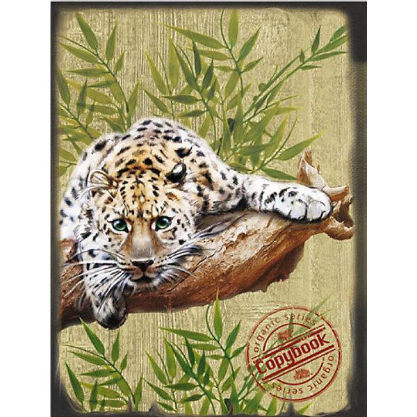 Феникс+ Тетрадь на кольцах Леопард