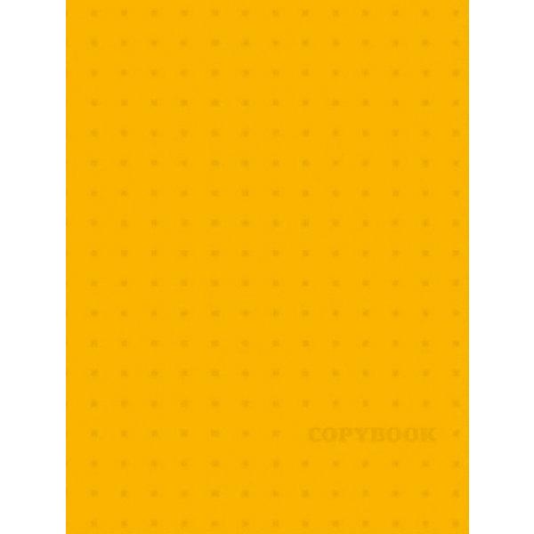 Феникс+ Тетрадь на кольцах Желтый узор Феникс+ раскраски с прозрачными страницами феникс модницы 49825 32 л