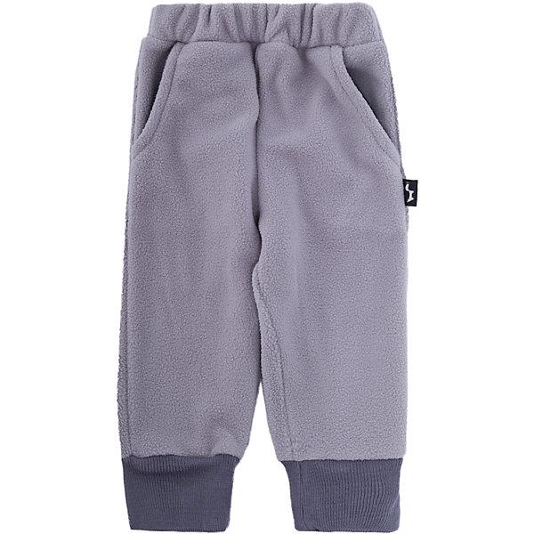 ЛисФлис Спортивные брюки Слон