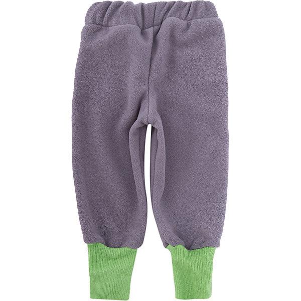 ЛисФлис Штаны Чемпион ЛисФлис для мальчика детские штаны balabala 22132150506 2015