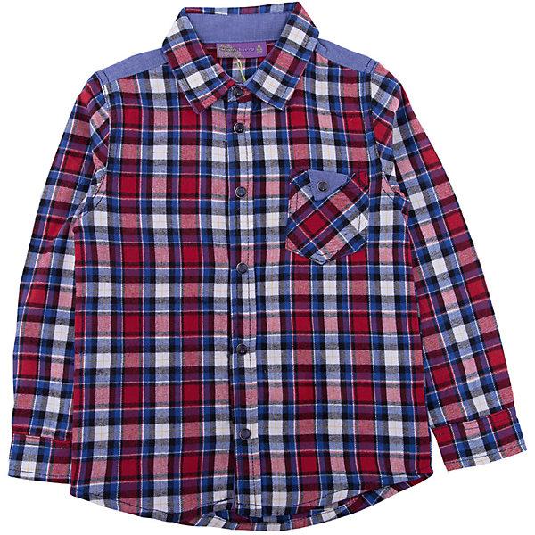 Рубашка Sweet Berry для мальчикаБлузки и рубашки<br>Характеристики товара:<br><br>• цвет: красный;<br>• состав материала: 100% хлопок;<br>• сезон: демисезон;<br>• застежка: кнопки;<br>• длинные рукава;<br>• накладной нагрудный карман;<br>• страна бренда: Россия;<br>• страна производства: Китай.<br><br>Стильная хлопковая рубашка из байковой ткани в клетку с накладным карманом и контрастной отделкой на спинке. Рубашка с длинным рукавом. Застегивается на кнопки. Отложной воротничок.<br><br>Рубашку Sweet Berry (Свит Берри) для мальчика можно купить в нашем интернет-магазине.<br>Ширина мм: 174; Глубина мм: 10; Высота мм: 169; Вес г: 157; Цвет: красный; Возраст от месяцев: 24; Возраст до месяцев: 36; Пол: Мужской; Возраст: Детский; Размер: 98,128,122,116,110,104; SKU: 7094727;