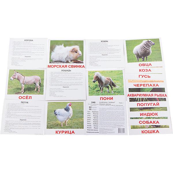 Набор обучающих карточек Вундеркинд с пелёнок Домашние животные 20 штукОзнакомление с окружающим миром<br>Характеристики:<br><br>• ISBN: 4612731630201;<br>• бренд: Вундеркинд с пеленок;<br>• вес: 190 гр;<br>• размер: 19,5x16,5x1 см;<br>• возраст: от 3 лет;<br>• количество карточек: 20 шт.<br><br>Комплект карточек «Домашние животные» - это 20 карточек с фотографиями домашних животных для детей на качественном картоне.<br><br>В набор карточек вошли: гусь, утка, коза, овца, пони, осел, кошка, петух, хомяк, индюк, собака, свинья, корова, кролик, курица, лошадь, черепаха, попугай, морская свинка и аквариумная рыбка.<br><br>Карточки животных намеренно сделаны не на белом фоне, а в естественной среде обитания животных. Так карточки выглядят не только гораздо эстетичнее, но и дают детям представление о том, в какой среде эти животные живут, можно ли их держать в квартире, или же им нужна придомовая территория.<br><br>Лишних деталей, которые могут помешать восприятию информации, на картинках нет.<br>На обратной стороне каждой карточки есть дополнительные материалы. Они включают двенадцать занимательных фактов, четыре задания для ребенка и одну логическую загадку.<br><br>Комплект карточек «Домашние животные» можно купить в нашем интернет-магазине.<br>Ширина мм: 195; Глубина мм: 165; Высота мм: 10; Вес г: 190; Возраст от месяцев: 3; Возраст до месяцев: 36; Пол: Унисекс; Возраст: Детский; SKU: 7182294;