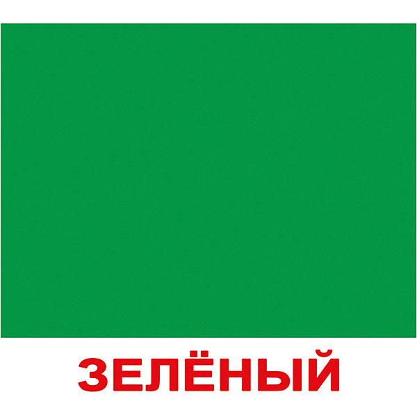 Купить Набор обучающих мини-карточек Вундеркинд с пелёнок Цвет 20 штук, Россия, Унисекс