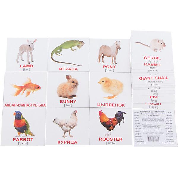Набор обучающих мини-карточек Вундеркинд с пелёнок Domestic animals/Домашние животные, двухсторонний 40 штукОбучающие карточки<br>Характеристики:<br><br>• ISBN: 4612731631093;<br>• бренд: Вундеркинд с пеленок;<br>• вес: 80 гр;<br>• материал: картон;<br>• размер: 10x8,5x1,5 см;<br>• возраст: от 1 года;<br>• количество карточек: 40 шт.<br><br>Комплект карточек МИНИ-рус. яз. «Domestic animals/Домашние животные» представляет из себя двухсторонний набор карточек с фотографиями домашних животных, с подписями на английском языке. На обороте - те же картинки с подписями на русском языке.<br><br>Поучительные карточки развивают память, внимание, усидчивость и другие полезные навыки. Набор подходит для детей от 1 года. Благодаря этим карточкам у  ребенка происходит развитие различных отделов головного мозга, формируется фотографическая память, он развивается гораздо быстрее сверстников. Кроме того, малыш с раннего детства изучает иностранные языки.<br><br>В набор карточек входят слова: 1.Cat - Кошка 2.Kitten - Котёнок 3.Dog - Собака 4.Puppy - Щенок 5.Degu - Дегу 6.Cow - Корова 7.Calf - Телёнок 8.Horse - Лошадь 9.Foal - Жеребёнок 10.Hen - Курица 11.Rooster - Петух 12.Chick - Цыплёнок 13.Duck - Утка 14.Duckling - Утёнок 15.Goose - Гусь 16.Gosling - Гусёнок 17.Hamster - Хомяк 18.Skinny pig - Скинни 19.Chinchilla - Шиншилла 20.Guinea pig - Морская свинка 21.Pony - Пони 22.Sheep - Овца 23.Lamb - Ягнёнок 24.Donkey - Осёл 25.Foal - Ослёнок 26.Pig - Свинья 27.Piglet - Поросёнок 28.Rabbit - Кролик 29.Bunny - Крольчонок 30.Goat - Коза 31.Goatling - Козлёнок 32.Ferret - Хорёк 33.Turkey - Индюк 34.Iguana - Игуана 35.Alpaca - Альпака 36.Parrot - Попугай 37.Gerbil - Песчанка 38.Tortoise - Черепаха 39.Giant snail - Ахатина 40.Aquarium fish - Аквариумная рыбка.<br><br> Комплект карточек МИНИ-рус. яз. «Domestic animals/Домашние животные» можно купить в нашем интернет-магазине.<br>Ширина мм: 100; Глубина мм: 85; Высота мм: 15; Вес г: 80; Возраст от месяцев: 12; Возраст до месяцев: 60; Пол: Унис