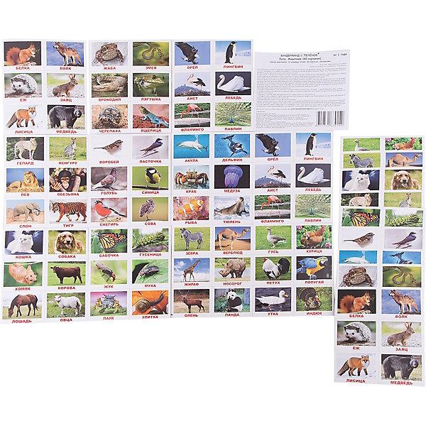 Вундеркинд с пелёнок Настольная игра Вундеркинд с пелёнок Лото Животные лото дикие животные 36 деревянных фишек 6 карточек