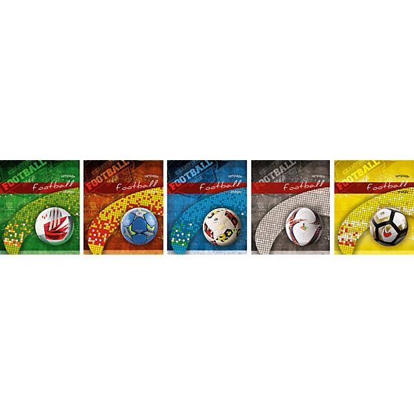Комплект тетрадей в клетку АппликА Футбольный мяч 5 шт, 48 листов с полямиТетради<br>Характеристики товара:<br><br>• количество тетрадей: 5;<br>• количество листов: 48;<br>• формат: А5;<br>• возраст: от 3 лет;<br>• материал: бумага, офсет;<br>• обложка: мелованный картон;<br>• размер упаковки:18,3х20,2х2 см;<br>• страна-производитель: Россия.<br><br>Комплект «Футбольный мяч» состоит из пяти общих тетрадей, 48 листов. Обложки тетрадей изготовлены из мелованного картона с выборочным УФ лаком. На обложках изображены разнообразные футбольные мячи, что особенно порадует поклонников данного вида спорта. Листы тетрадей выполнены из плотной офсетной бумаги, разлинованы в клетку. По краям страницы расположены удобные поля красного цвета.<br><br>Комплект общих тетрадей в клетку из 5шт., Ассорти Футбольный мяч  - 48 листов формата А5 с полями, КТС-ПРО можно купить в нашем интернет-магазине.<br>Ширина мм: 202; Глубина мм: 183; Высота мм: 20; Вес г: 565; Возраст от месяцев: 36; Возраст до месяцев: 1188; Пол: Унисекс; Возраст: Детский; SKU: 7185404;