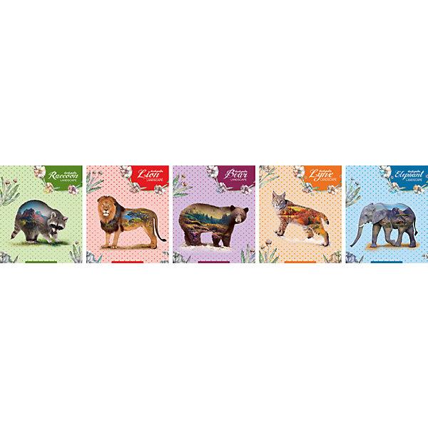 Комплект тетрадей в клетку АппликА Животные 5 шт, 48 листовТетради<br>Характеристики товара:<br><br>• количество тетрадей: 5;<br>• количество листов: 48;<br>• формат: А5;<br>• возраст: от 3 лет;<br>• материал: бумага, офсет;<br>• обложка: мелованный картон;<br>• размер упаковки: 20х16х2,5 см;<br>• страна-производитель: Россия. <br><br>Комплект «Животные» содержит пять общих тетрадей форматом А5. Тетради разлинованы в клетку и дополнены яркими полями. Внутренний блок выполнен из качественной офсетной бумаги. Обложка изготовлена из мелованного картона, защищающего страницы от намокания и изнашивания. Обложка выполнена в приятном дизайне с изображением животных, выборочно декорирована лаком.<br><br>Комплект общих тетрадей в клетку из 5шт., Ассорти Животные  - 48 листов формата А5, КТС-ПРО можно купить в нашем интернет-магазине.<br>Ширина мм: 200; Глубина мм: 165; Высота мм: 25; Вес г: 565; Возраст от месяцев: 36; Возраст до месяцев: 1188; Пол: Унисекс; Возраст: Детский; SKU: 7185412;
