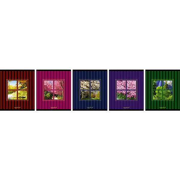 АппликА Комплект тетрадей в клетку АппликА Вид из окна 5 шт, 48 листов взгляни на мир иначе комплект