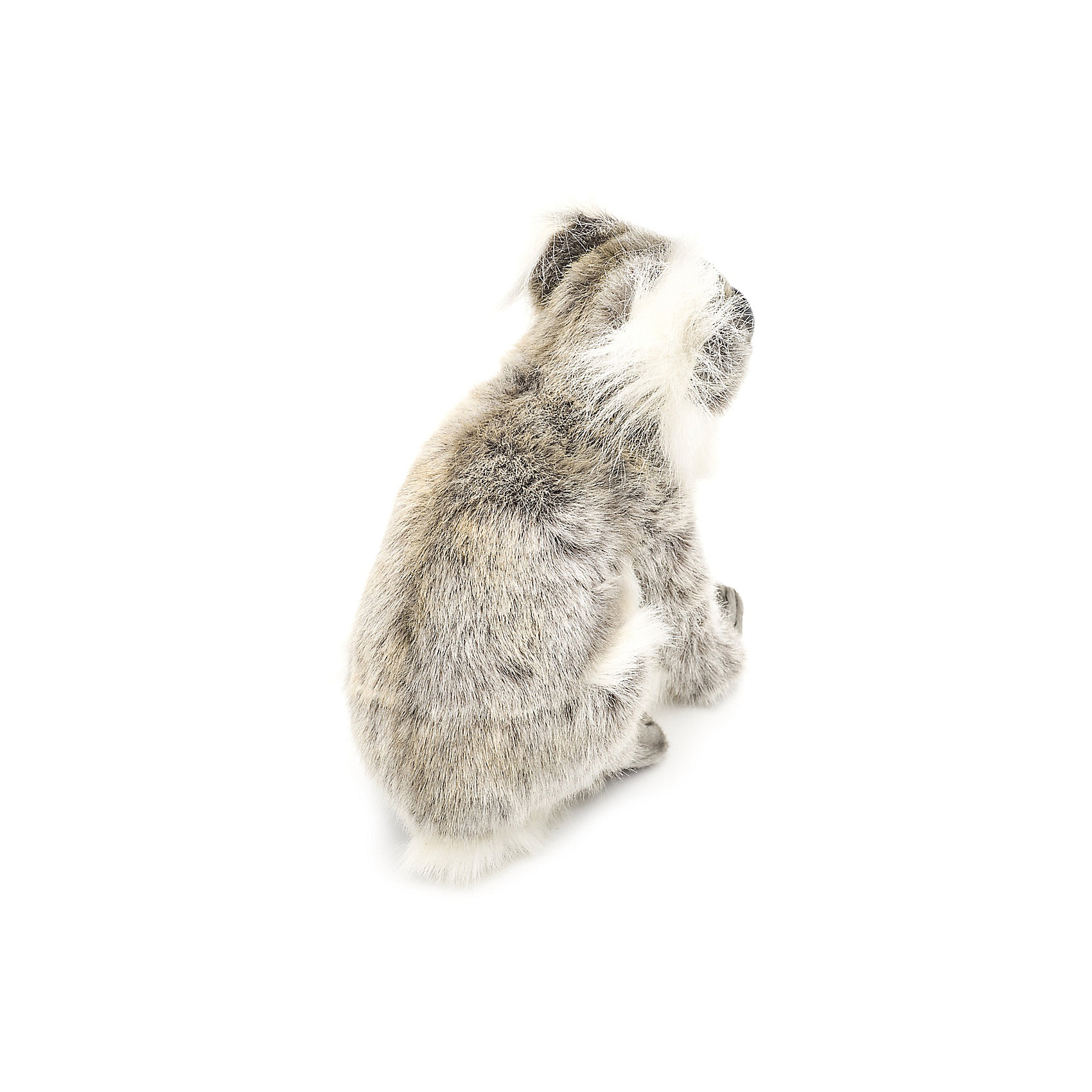 """Мягкая игрушка Hansa """"Счастливая Коала"""", 23 см фото 5"""