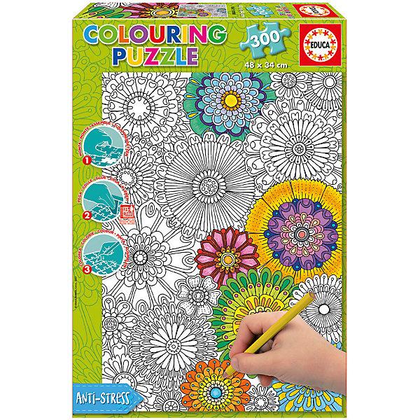 Educa Пазл-раскраска Цветы, 300 деталей