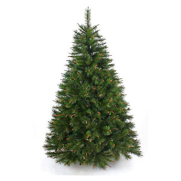 Сосна ПРАЗДНИЧНАЯ 150 смИскусственные ёлки<br>Материал - леска. Тип иглы - сосна, чередуются ветви с длиной иглы 5 см и 3 см. 3 секции, 340 веточек, диаметр нижней кроны - 101,6 см. Подставка - пластик. Комбинация из веток разного оттенка и двухцветной хвои, имитация древесины на ветвях придают ели по-настоящему роскошный вид. Простая сборка - стоит только отогнуть ветви и распушить их.<br>Ширина мм: 840; Глубина мм: 310; Высота мм: 440; Вес г: 6500; Возраст от месяцев: 36; Возраст до месяцев: 2147483647; Пол: Унисекс; Возраст: Детский; SKU: 7228483;