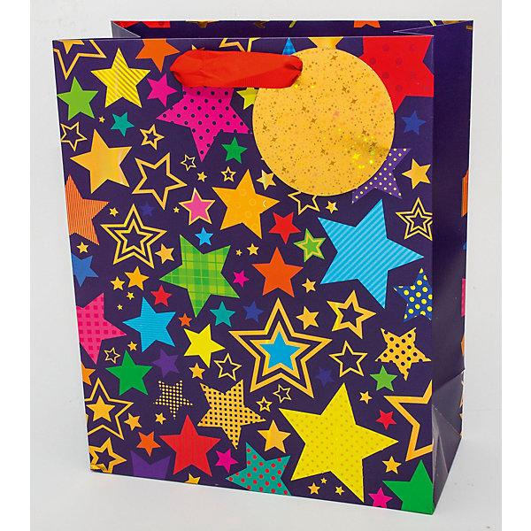 Арт Дизайн Пакет премиум ABpr размер 260х320 арт дизайн подарочный набор открытка с ручкой самой фееричной тебе