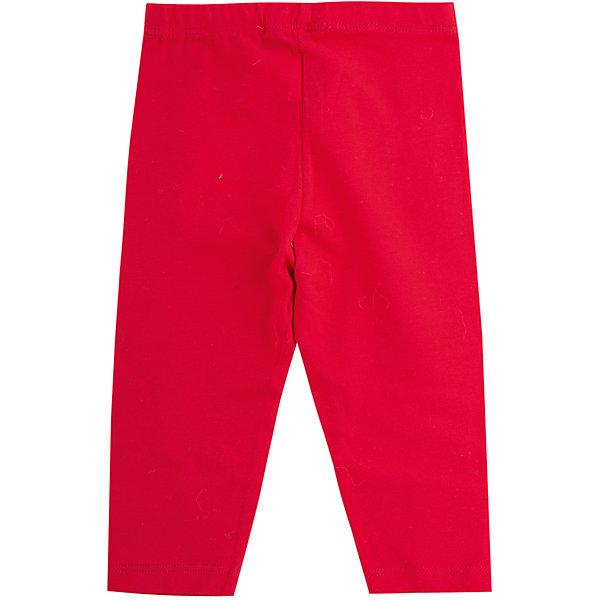 Wojcik Леггинсы Wojcik для девочки одежда для детей