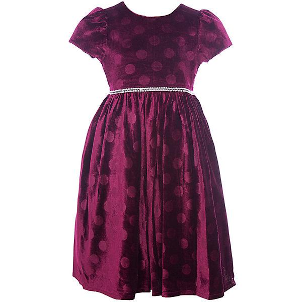 Нарядное платье Vitacci для девочкиОдежда<br>Характеристики товара:<br><br>• цвет: красный;<br>• состав: 100% полиэстер;<br>• подкладка: 100% хлопок;<br>• сезон: круглый год;<br>• особенности: нарядное, на подкладке, в горох;<br>• застежка: молния на спинке;<br>• поясок;<br>• с коротким рукавом;<br>• страна бренда: Италия;<br>• страна изготовитель: Китай.<br><br>Нарядное платье с коротким рукавом для девочки. Бархатное платье застегивается сзади на молнию. Платье с пояском в виде бусин-жемчужин, дополнено рисунком в крупый горох..<br><br>Нарядное платье Vitacci (Витачи) можно купить в нашем интернет-магазине.<br>Ширина мм: 236; Глубина мм: 16; Высота мм: 184; Вес г: 177; Цвет: бордовый; Возраст от месяцев: 12; Возраст до месяцев: 15; Пол: Женский; Возраст: Детский; Размер: 86,110,104,98,92; SKU: 7301063;
