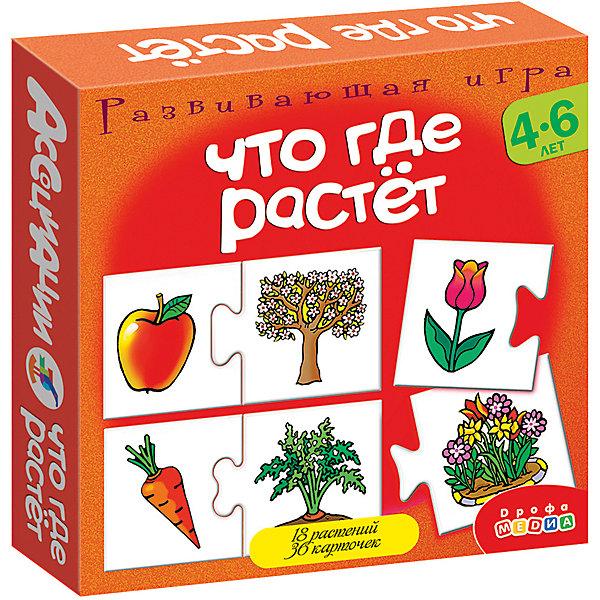Ассоциации. Что где растет.Обучающие карточки<br>Характеристики:<br><br>• тип игрушки: настольная игра;<br>• комплектация:24 карточки, правила;<br>• возраст: от 4 лет;<br>• размер: 16,5x16,5x3 см;<br>• издатель: Дрофа;<br>• упаковка: картонная коробка;<br>• материал: картон.<br><br>Игра Ассоциации «Что где растет»  станет отличным помощником в формировании ассоциативного мышления детей. Игры способствуют развитию внимания и памяти, расширяют кругозор. Во всех играх нужно подобрать карточки, которые можно объединить по определенному признаку. Карточки соединяются друг с другом пазловым замком. <br><br>Игра поможет детям с пользой и весело провести время. Ребенку предстоит руководствоваться логикой, подбирая карточки с изображениями растений друг к другу.  Карточки соединяются между собой по принципу пазлов. В процессе игры из серии «Ассоциации» дети разовьют внимательность и улучшат моторику рук.<br><br>Игру Ассоциации «Что где растет»  можно купить в нашем интернет-магазине.<br>Ширина мм: 165; Глубина мм: 165; Высота мм: 30; Вес г: 150; Возраст от месяцев: 48; Возраст до месяцев: 2147483647; Пол: Унисекс; Возраст: Детский; SKU: 7323562;