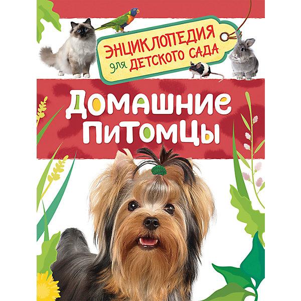 Росмэн Домашние питомцы. Энциклопедия для детского сада