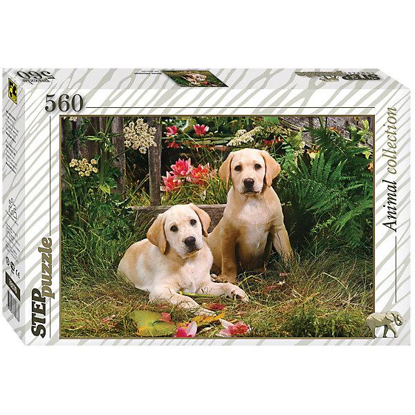 Пазл Step Puzzle Щенки лабрадора, 560 элементовПазлы классические<br>Характеристики товара:<br><br>• возраст: от 7 лет;<br>• количество деталей: 560;<br>• размер собранной картины: 50х34,5 см.;<br>• материал: картон;<br>• размер упаковки: 33x22x4 см.;<br>• упаковка: картонная каробка;<br>• бренд, страна производства: STEP puzzle, Россия.<br>                                                                                                                                                                                                                                                                                                                       <br>Пазл «Щенки лабрадора», состоящий из 560 элементов, придется по душе всей вашей семье. Собрав этот пазл, вы получите оригинальный красочный постер с изображением двух милых щенков лабрадора. <br><br>Пазл выполнен из высококачественных материалов, что обеспечивает идеальное прилегание элементов друг к другу. Готовую картину можно склеить, вставить в рамку и повесить на стену.<br><br>Собирание пазлов это не только интересно, но и полезно: ведь в процессе создания картинки развивается мелкая моторика, тренируются наблюдательность и логическое мышление.<br><br>Пазл «Щенки лабрадора», 560 деталей можно купить в нашем интернет-магазине.<br>Ширина мм: 335; Глубина мм: 215; Высота мм: 39; Вес г: 350; Возраст от месяцев: 84; Возраст до месяцев: 2147483647; Пол: Унисекс; Возраст: Детский; SKU: 7338350;