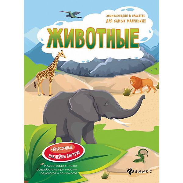 Fenix Животные: книжка-плакат животные джунглей книжка игрушка