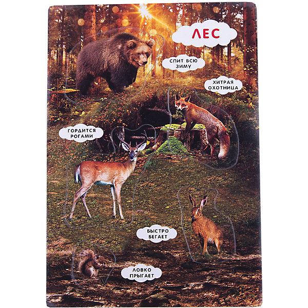 Fenix Умные пазлы. Кто живет в лесу? fenix умные пазлы кто живет в саванне