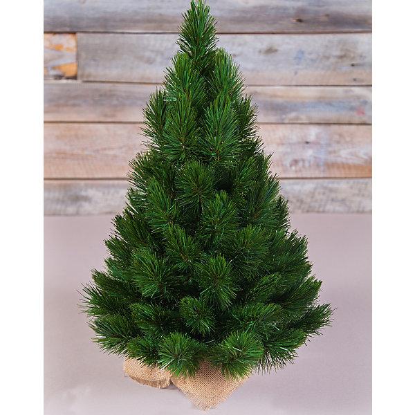 Triumph Tree ТРИУМФ ЕЛЬ ТРИУМФ НОРД 60 СМ В МЕШОЧКЕ ЗЕЛЕНАЯ triumph tree ель триумф норд стройная зеленая 2 15